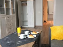 Čiurlionio street apartament