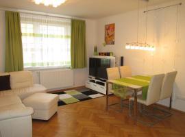 维也纳市政厅公寓