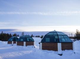 Arctic Glass Igloos, Sinettä