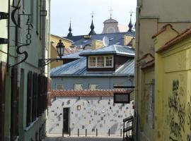 Sofijos apartamentai Old Town