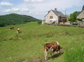 Chez Marraine, Sauvat