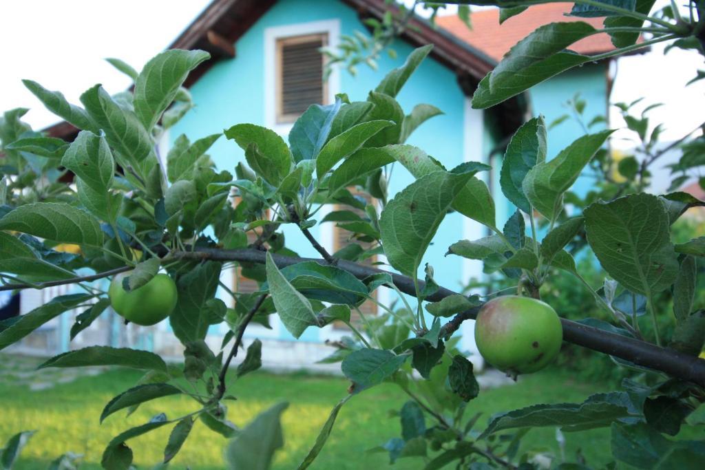 Villa Green Garden, Илиджа, Босния и Герцеговина