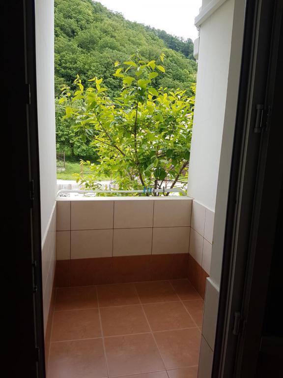 Гостевой дом Марина, Пляхо