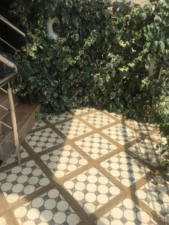 Гостевой дом на Абазгаа 25