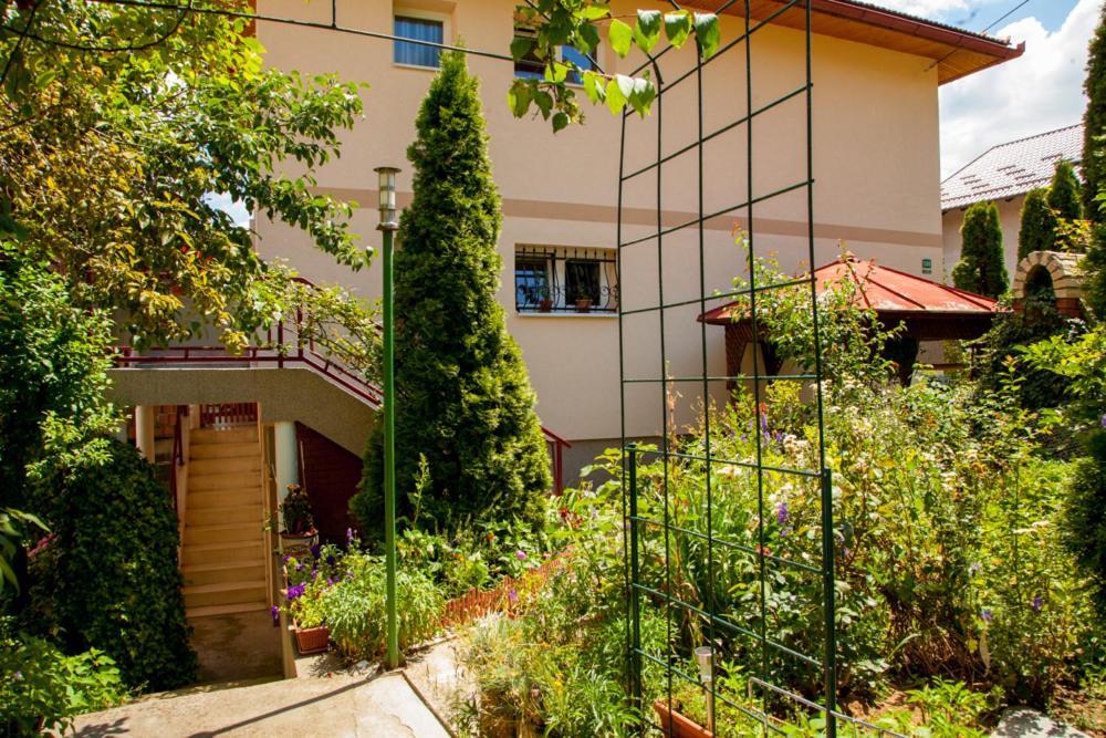 Lavander House, Сараево, Босния и Герцеговина
