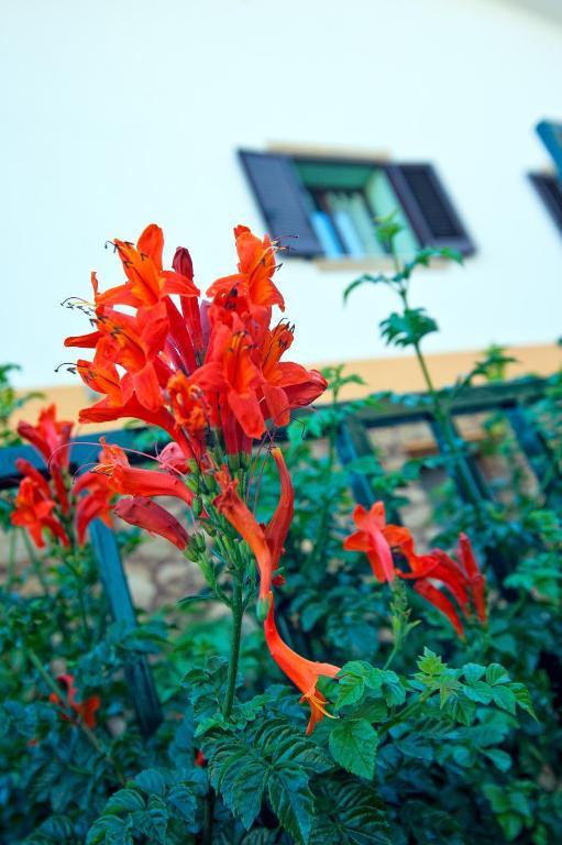 Casale La Zagara - Sciacca - Foto 39
