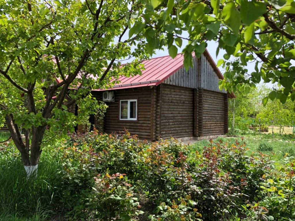 База отдыха Кубанский хутор