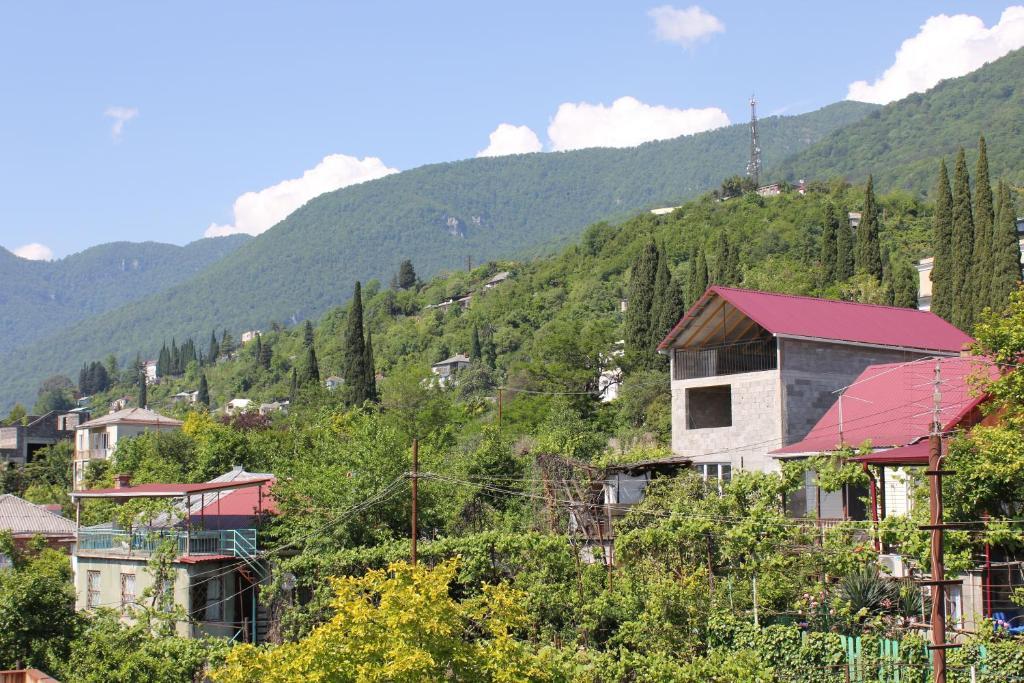 Мини-гостиница Званба