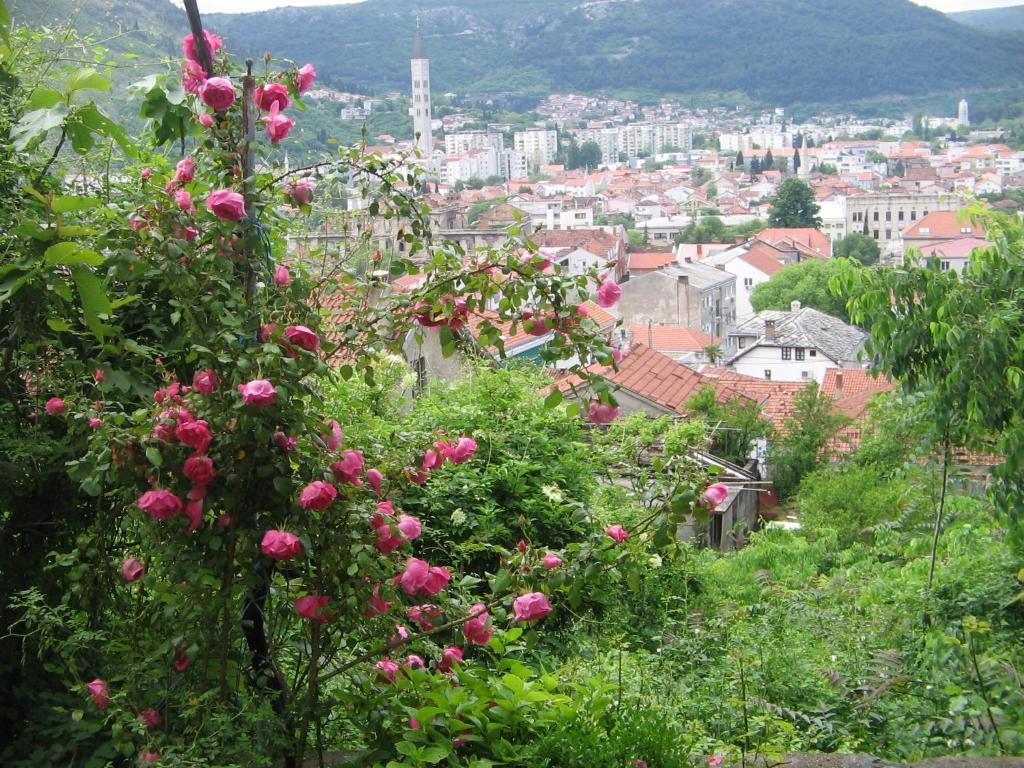 Guesthouse Panorama, Мостар, Босния и Герцеговина