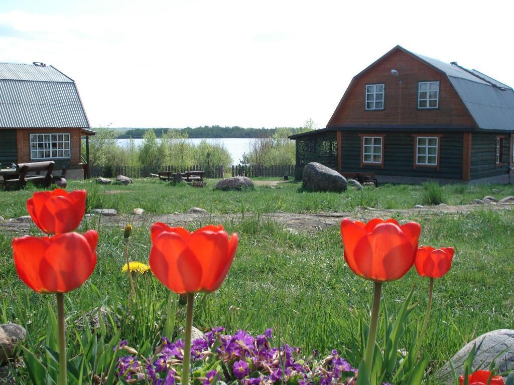 База отдыха Рыбацкая Деревня, Пено