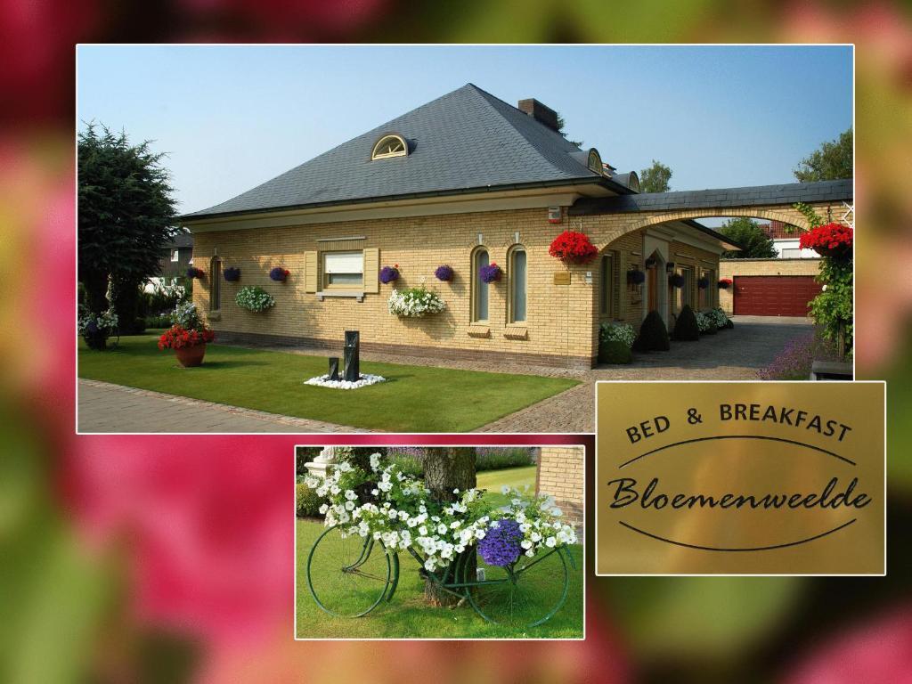 B&B Bloemenweelde, Кортрейк, Бельгия