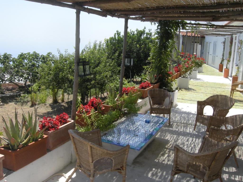 Casa vacanze la casa dell 39 ulivo italia ischia for Casa vacanza ischia
