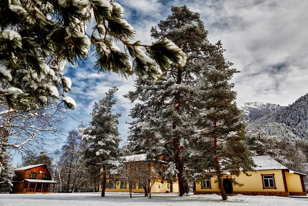 заказ теберда гостевой дом на новогодние праздники фото домов стиле