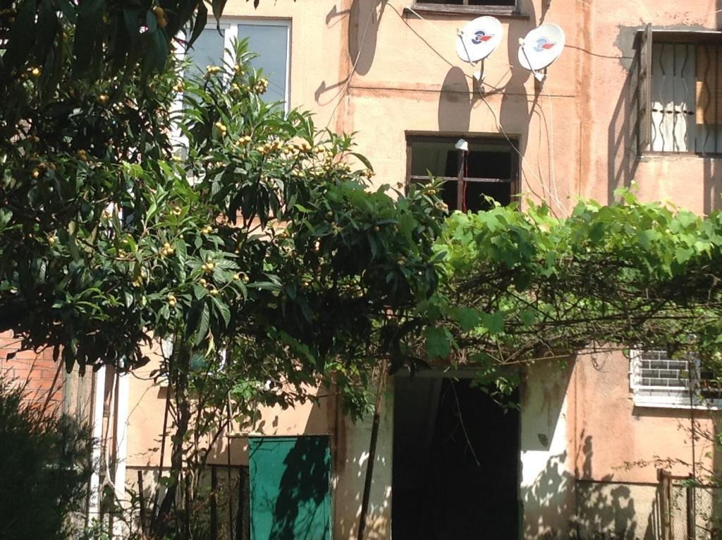 Апартаменты в Пицунде