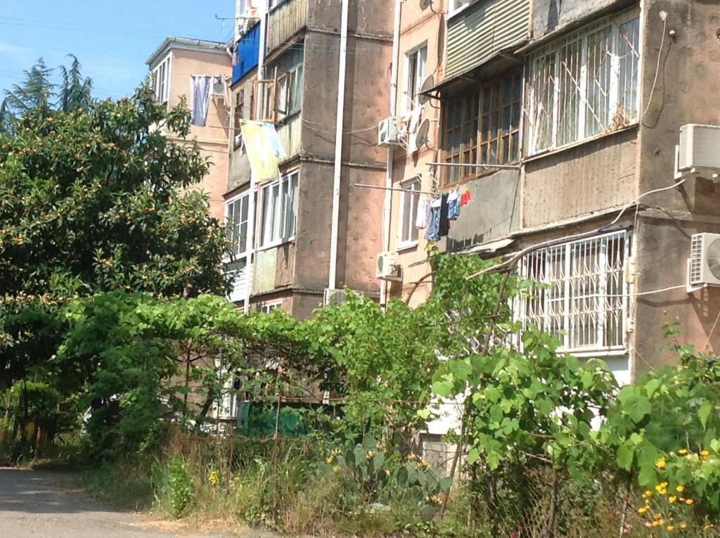 Апартаменты в Пицунде, Пицунда, Абхазия