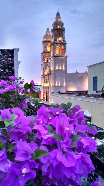 Отель Hotel Maya Ah Kim Pech, Кампече
