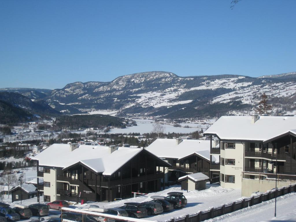 Alpin Apartments Sørlia, Эйер, Норвегия