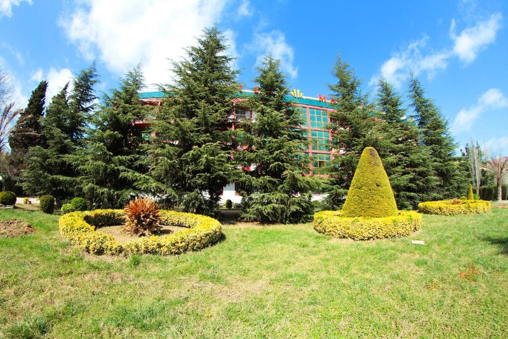 Отель Масаллы