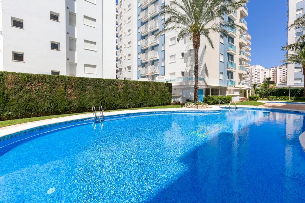 Apartamento palmeras de playa de gandia 2018 - Playa gandia apartamentos ...