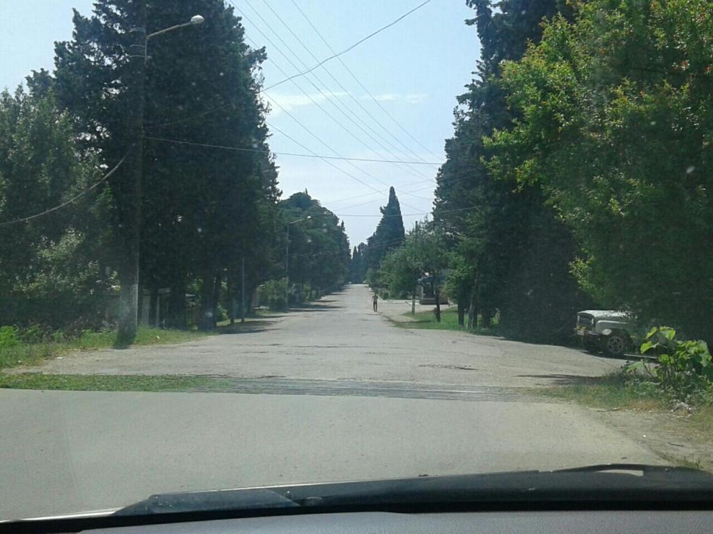 Teremok Guest House, Гудаута, Абхазия