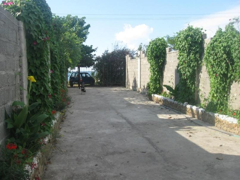 Гостевой дом Elena