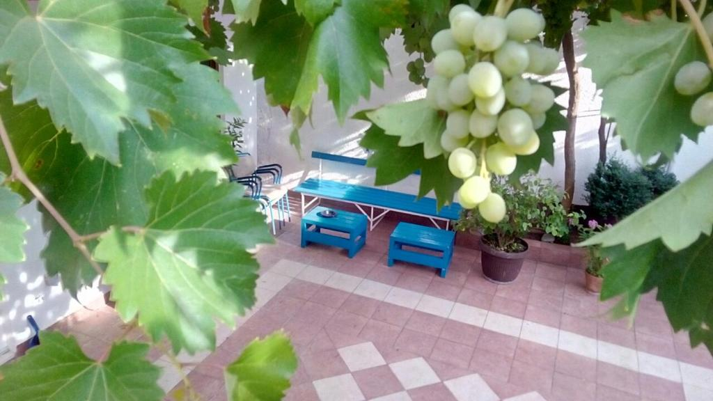 Fullcolor House, Мостар, Босния и Герцеговина
