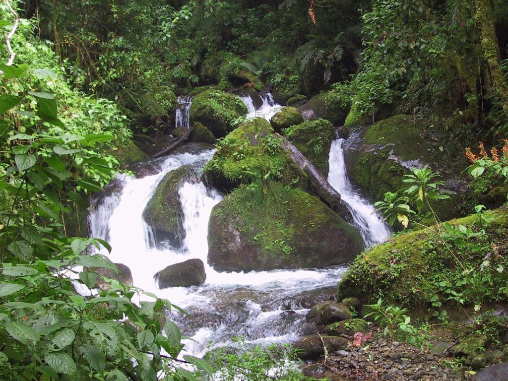 壁纸 风景 旅游 瀑布 山水 桌面 1024_768