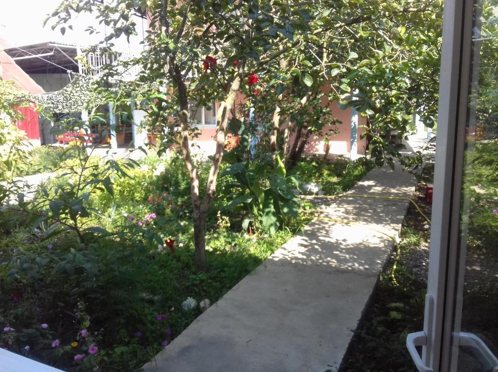 Гостевой дом Березовая Роща, Пицунда, Абхазия