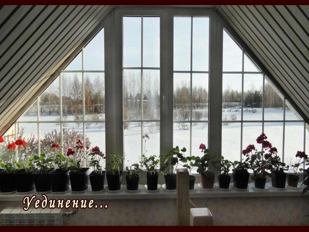 Отель Сиреневый Сад