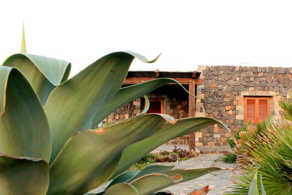 Residence Cuore Mediterraneo - Pantelleria - Foto 30