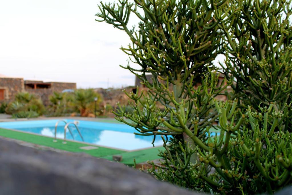 Residence Cuore Mediterraneo - Pantelleria - Foto 9