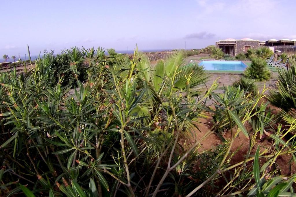Residence Cuore Mediterraneo - Pantelleria - Foto 21