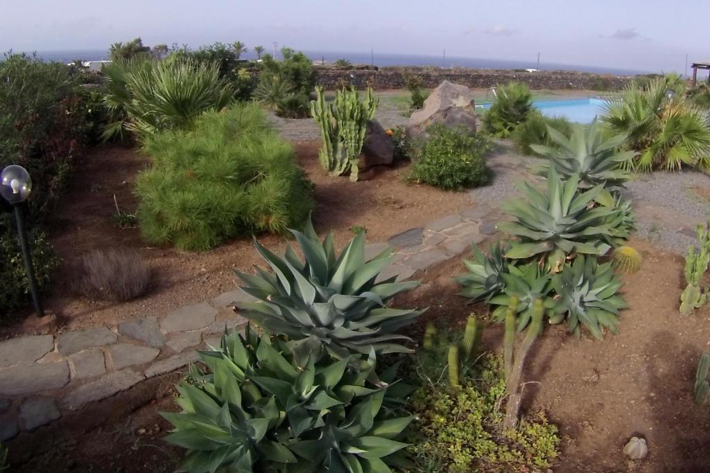 Residence Cuore Mediterraneo - Pantelleria - Foto 22