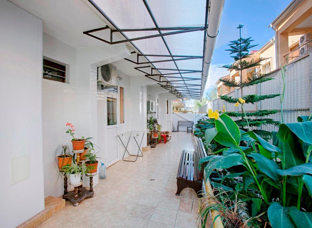 Отель Кипарис 3 Адлер Сочи  цены гостиницы отзывы