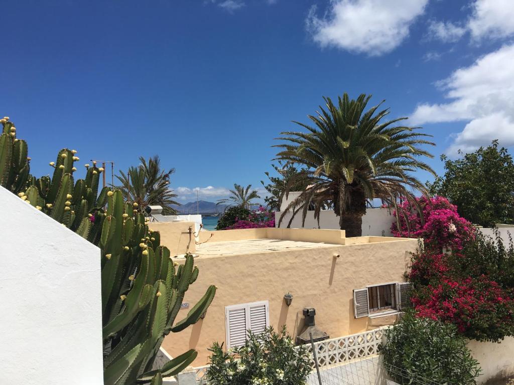 Hoplaco beach apartment 2018 - Pisos de bancos primera linea de playa ...
