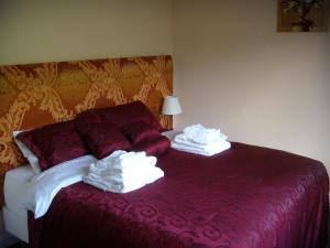 Rila Guesthouse - Image3