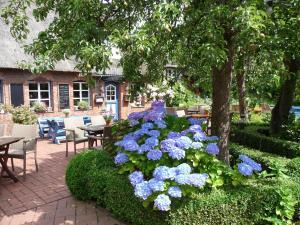 garten im landhausstil anlegen – igelscout, Gartenarbeit ideen