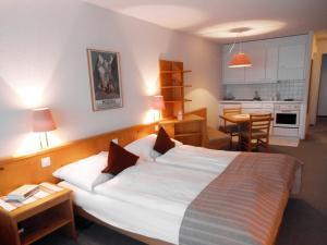 Hotel Aeschipark - Image3