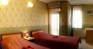 Ambaritsa Hotel - Image4
