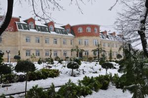 Vilesh Palace Hotel - Image1