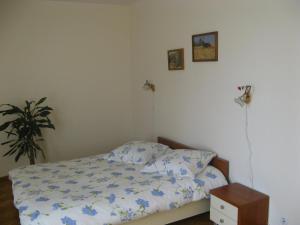 Daugavkrasti Hotel - Image3