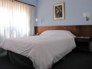 Hotel San Carlos - Image3