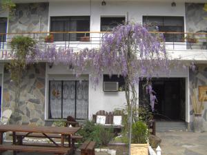 Hotel Oriental - Image1