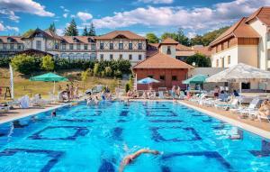 Erzsebet Park Hotel - Image4