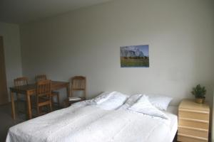 Holar Cottages and Apartments - Image3