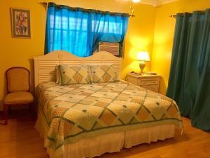 Eldemire s Tropical island Inn - Image3