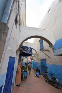 Riad Safi - Image1