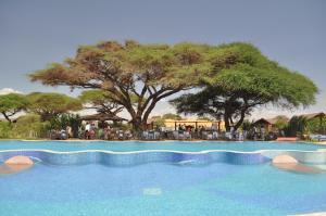 Kilima Safari Camp - Image4