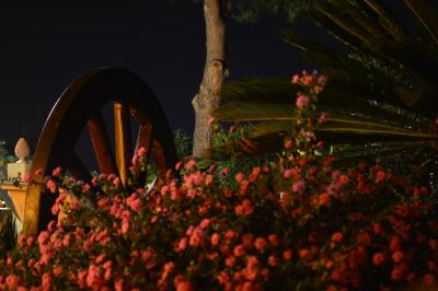 Villa Quiete - Spadafora - Foto 36