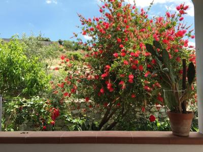 B&B Terre di Sicilia - Giardini Naxos - Foto 25